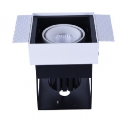 Trimless 13W Adjustable led downlight